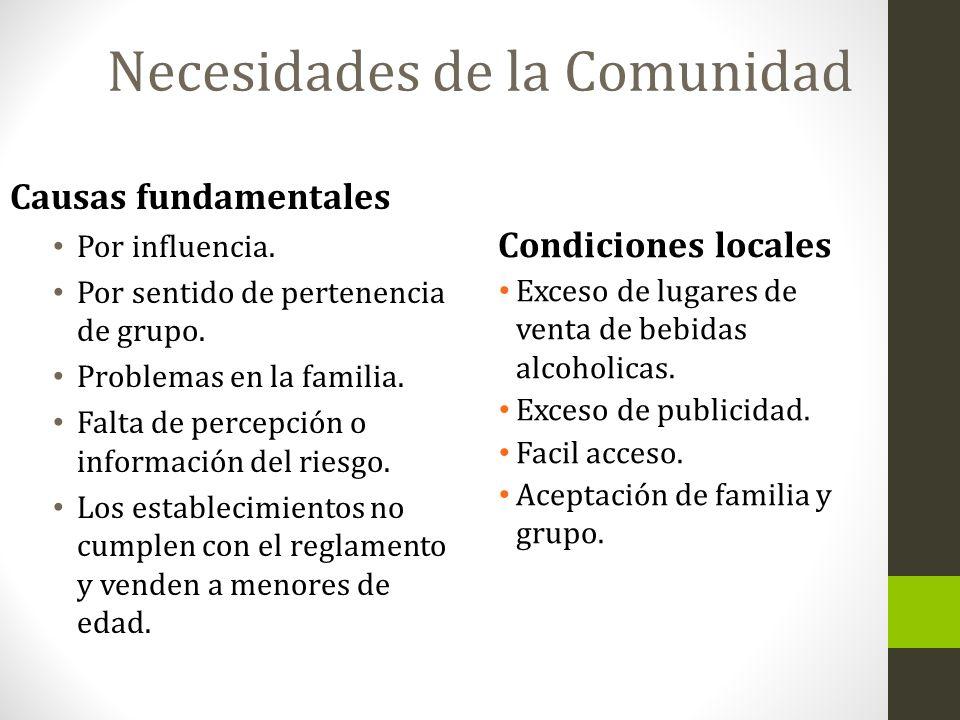 Causas fundamentales Por influencia. Por sentido de pertenencia de grupo. Problemas en la familia. Falta de percepción o información del riesgo. Los e