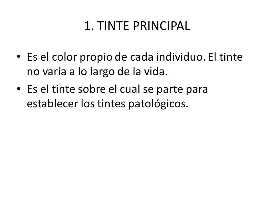 1. TINTE PRINCIPAL Es el color propio de cada individuo. El tinte no varía a lo largo de la vida. Es el tinte sobre el cual se parte para establecer l