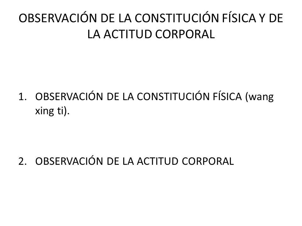 OBSERVACIÓN DE LA CONSTITUCIÓN FÍSICA Y DE LA ACTITUD CORPORAL 1.OBSERVACIÓN DE LA CONSTITUCIÓN FÍSICA (wang xing ti). 2.OBSERVACIÓN DE LA ACTITUD COR