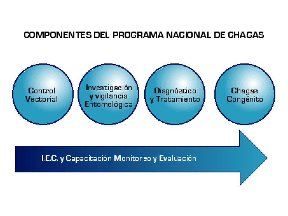 Componente Gerencia y Coordinación Intersectorial del Programa Nacional de Chagas Condiciones Para La Red De Servicios De Salud Red de servicios de salud organizada para la atención en I nivel y II nivel con referencia a III nivel.