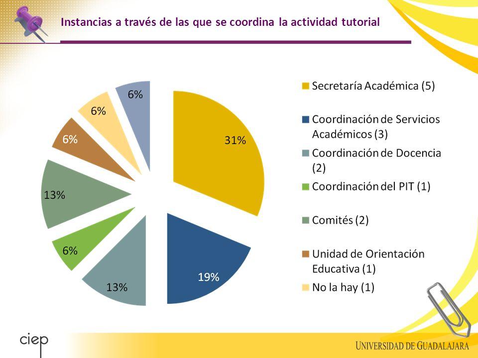 Instancias a través de las que se coordina la actividad tutorial