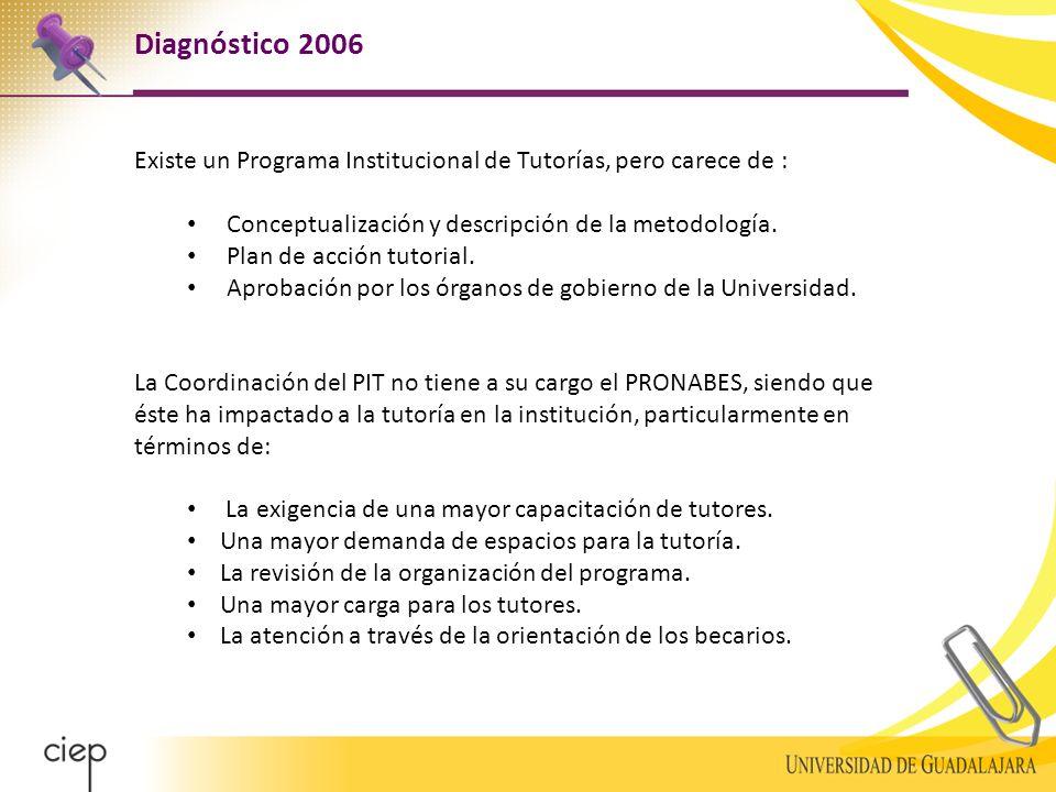 Existe un Programa Institucional de Tutorías, pero carece de : Conceptualización y descripción de la metodología.