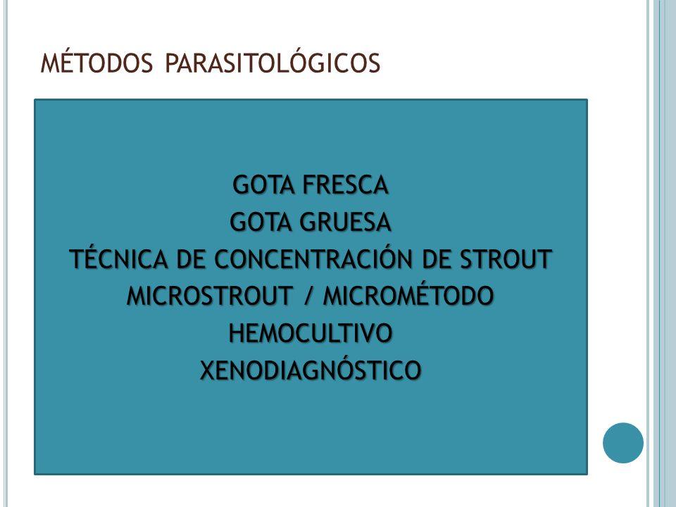 MÉTODOS PARASITOLÓGICOS GOTA FRESCA GOTA GRUESA TÉCNICA DE CONCENTRACIÓN DE STROUT MICROSTROUT / MICROMÉTODO HEMOCULTIVOXENODIAGNÓSTICO