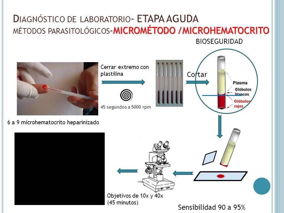 MICROMÉTODO /MICROHEMATOCRITO D IAGNÓSTICO DE LABORATORIO - ETAPA AGUDA MÉTODOS PARASITOLÓGICOS -MICROMÉTODO /MICROHEMATOCRITO Sensibilidad 90 a 95% 4