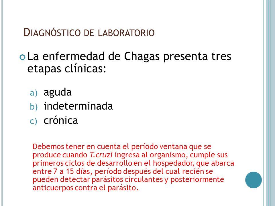 D IAGNÓSTICO DE LABORATORIO La enfermedad de Chagas presenta tres etapas clínicas: a) aguda b) indeterminada c) crónica Debemos tener en cuenta el per