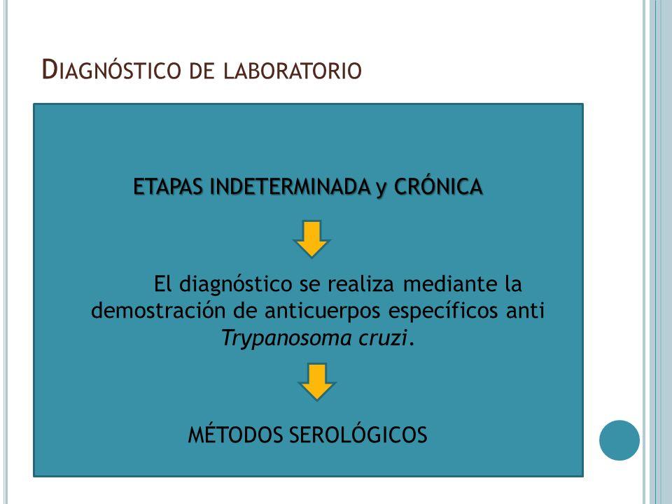 D IAGNÓSTICO DE LABORATORIO ETAPAS INDETERMINADA y CRÓNICA El diagnóstico se realiza mediante la demostración de anticuerpos específicos anti Trypanos