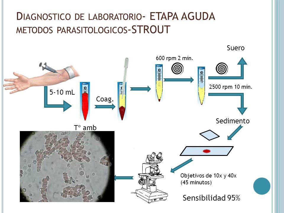 D IAGNOSTICO DE LABORATORIO - ETAPA AGUDA METODOS PARASITOLOGICOS -STROUT Sensibilidad 95% 5-10 mL Tº amb Coag. 600 rpm 2 min. 2500 rpm 10 min. Suero