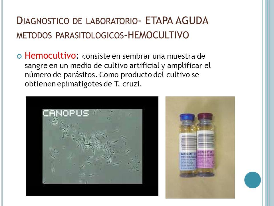 D IAGNOSTICO DE LABORATORIO - ETAPA AGUDA METODOS PARASITOLOGICOS - HEMOCULTIVO Hemocultivo: consiste en sembrar una muestra de sangre en un medio de