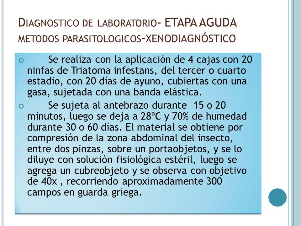 D IAGNOSTICO DE LABORATORIO - ETAPA AGUDA METODOS PARASITOLOGICOS - XENODIAGNÓSTICO Se realiza con la aplicación de 4 cajas con 20 ninfas de Triatoma