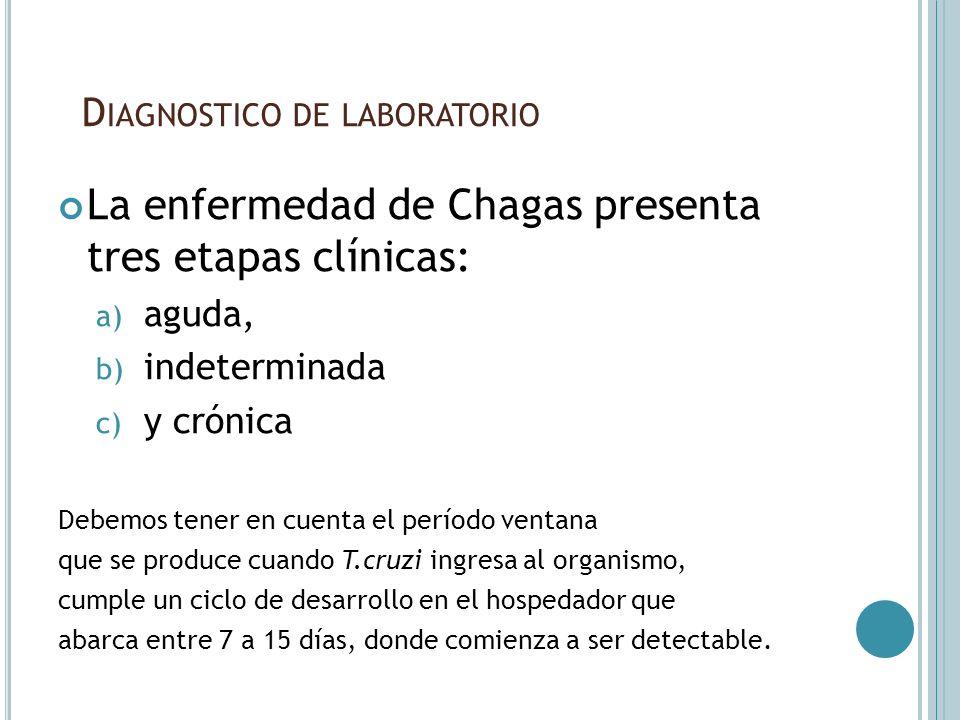 D IAGNOSTICO DE LABORATORIO La enfermedad de Chagas presenta tres etapas clínicas: a) aguda, b) indeterminada c) y crónica Debemos tener en cuenta el
