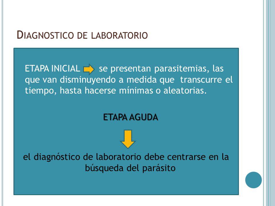 D IAGNOSTICO DE LABORATORIO ETAPA INICIAL se presentan parasitemias, las que van disminuyendo a medida que transcurre el tiempo, hasta hacerse mínimas