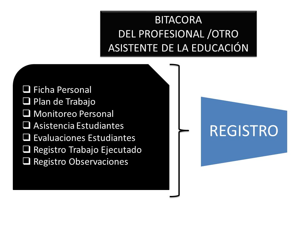 BITACORA DEL PROFESIONAL /OTRO ASISTENTE DE LA EDUCACIÓN BITACORA DEL PROFESIONAL /OTRO ASISTENTE DE LA EDUCACIÓN Ficha Personal Plan de Trabajo Monit