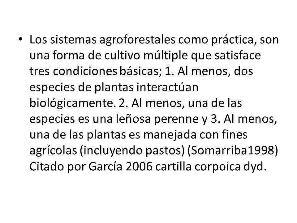 Los sistemas agroforestales como práctica, son una forma de cultivo múltiple que satisface tres condiciones básicas; 1. Al menos, dos especies de plan