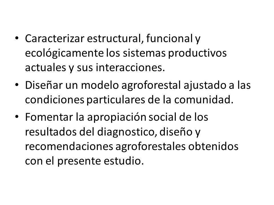 Caracterizar estructural, funcional y ecológicamente los sistemas productivos actuales y sus interacciones. Diseñar un modelo agroforestal ajustado a