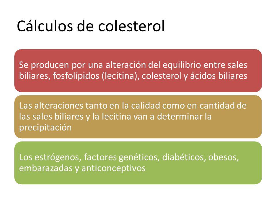 Cálculos de colesterol Se producen por una alteración del equilibrio entre sales biliares, fosfolípidos (lecitina), colesterol y ácidos biliares Las a
