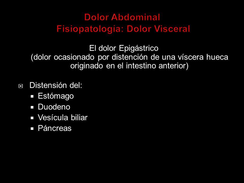 - matideces (fisiológica reborde hepático, Hepatomegalia si > 2 traversos dedo) -distensión con timpanismo generalizado Auscultación (durante unos 2 minutos) -valorar intensidad y características ruidos intestinales -peristaltismo normal ruido intestinal cada 1 a 3 minutos -ausencia de ruidos (ileo paralítico o reflejo por peritonitis) -ruidos metálicos (obstrucción intestinal) -soplos intraabdominales (aneurismas aórticos)