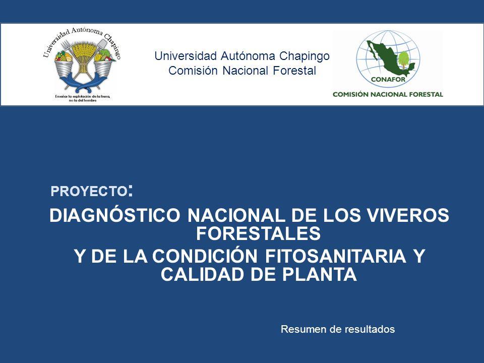 Universidad Autónoma Chapingo Comisión Nacional Forestal DIAGNÓSTICO NACIONAL DE LOS VIVEROS FORESTALES Y DE LA CONDICIÓN FITOSANITARIA Y CALIDAD DE P