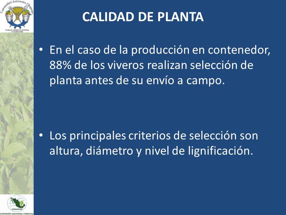 CALIDAD DE PLANTA En el caso de la producción en contenedor, 88% de los viveros realizan selección de planta antes de su envío a campo. Los principale