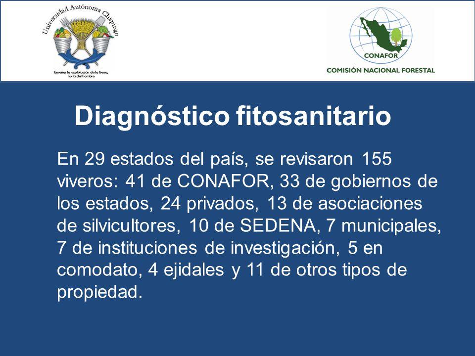 Diagnóstico fitosanitario En 29 estados del país, se revisaron 155 viveros: 41 de CONAFOR, 33 de gobiernos de los estados, 24 privados, 13 de asociaci