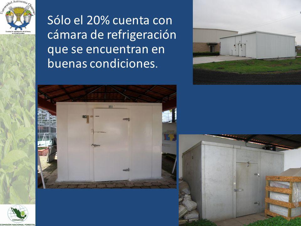 Sólo el 20% cuenta con cámara de refrigeración que se encuentran en buenas condiciones.