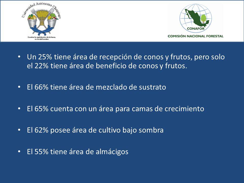 Un 25% tiene área de recepción de conos y frutos, pero solo el 22% tiene área de beneficio de conos y frutos. El 66% tiene área de mezclado de sustrat