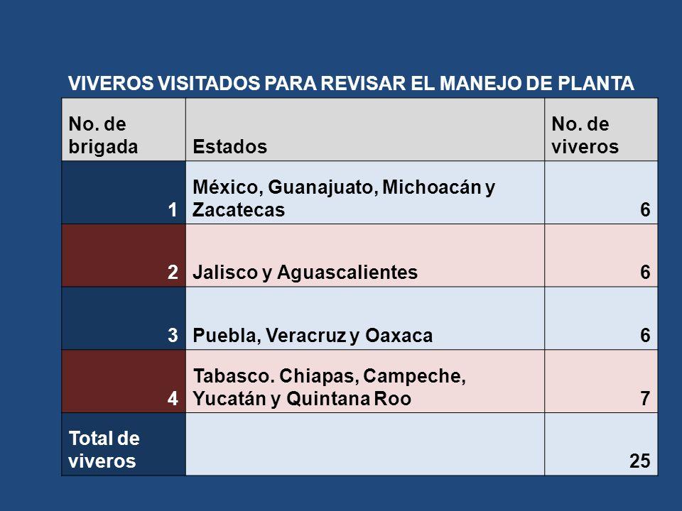 VIVEROS VISITADOS PARA REVISAR EL MANEJO DE PLANTA No. de brigadaEstados No. de viveros 1 México, Guanajuato, Michoacán y Zacatecas6 2Jalisco y Aguasc