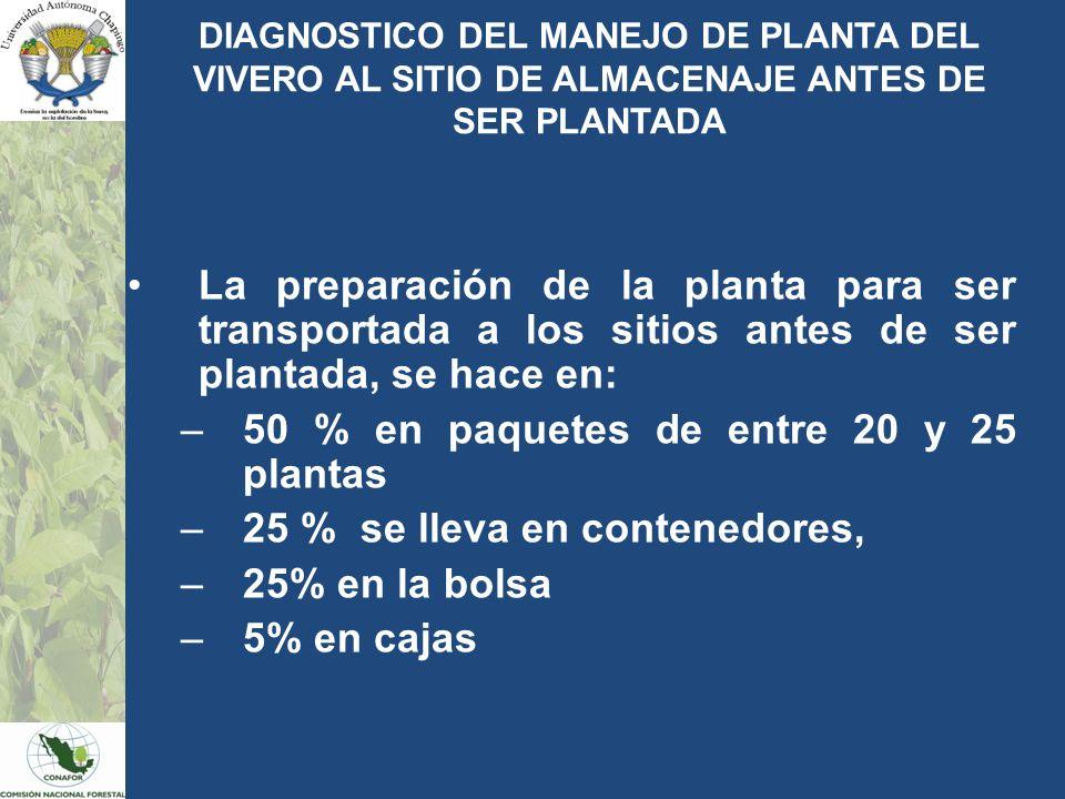 DIAGNOSTICO DEL MANEJO DE PLANTA DEL VIVERO AL SITIO DE ALMACENAJE ANTES DE SER PLANTADA La preparación de la planta para ser transportada a los sitio