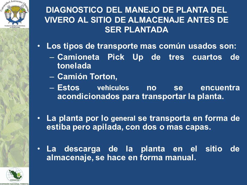Los tipos de transporte mas común usados son: –Camioneta Pick Up de tres cuartos de tonelada –Camión Torton, –Estos vehículos no se encuentra acondici