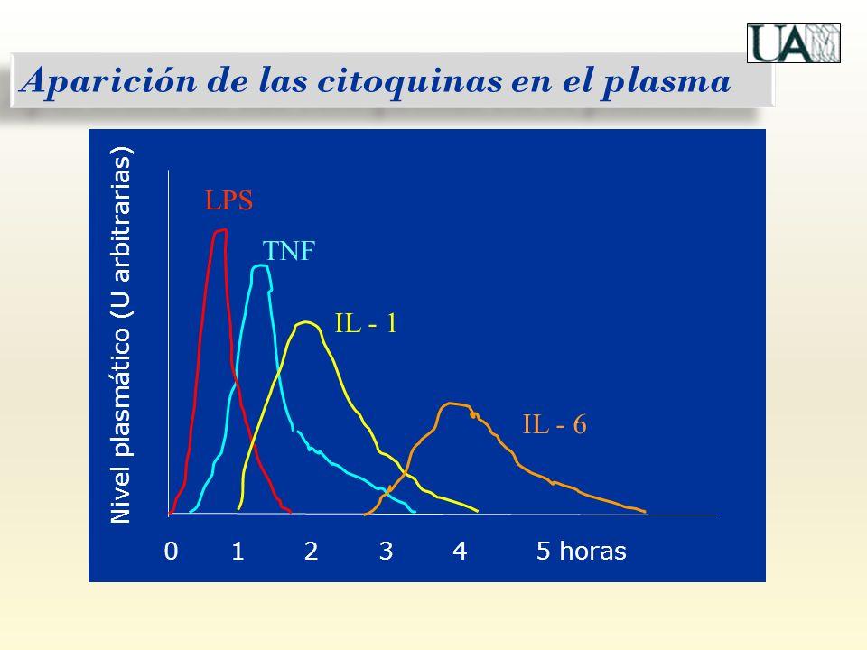 0 1 2 3 4 5 horas Nivel plasmático (U arbitrarias) LPS TNF IL - 1 IL - 6 Aparición de las citoquinas en el plasma