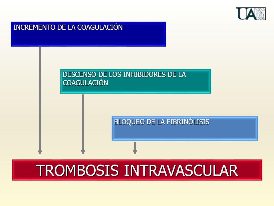 INCREMENTO DE LA COAGULACIÓN DESCENSO DE LOS INHIBIDORES DE LA COAGULACIÓN BLOQUEO DE LA FIBRINÓLISIS TROMBOSIS INTRAVASCULAR