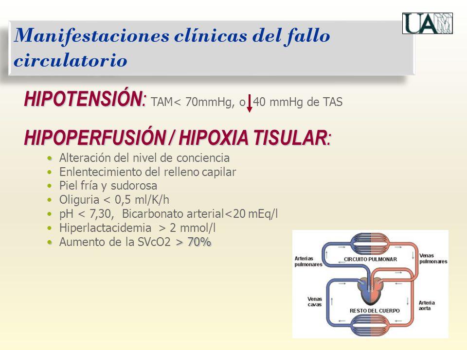 Alteración del nivel de conciencia Enlentecimiento del relleno capilar Piel fría y sudorosa Oliguria < 0,5 ml/K/h pH < 7,30, Bicarbonato arterial<20 m
