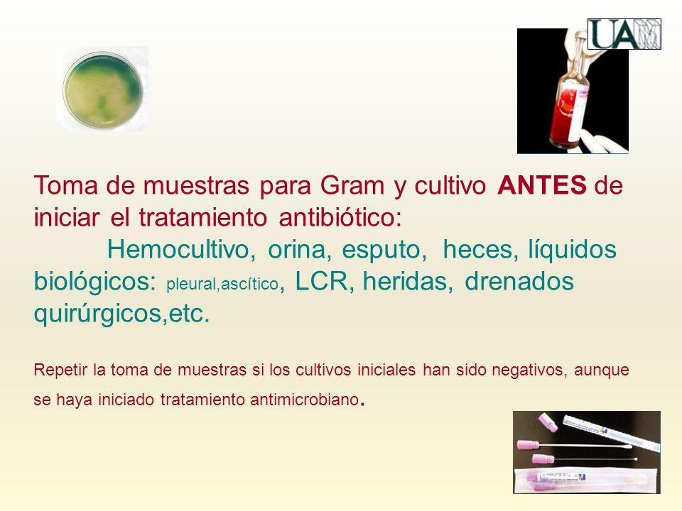 Toma de muestras para Gram y cultivo ANTES de iniciar el tratamiento antibiótico: Hemocultivo, orina, esputo, heces, líquidos biológicos: pleural,ascí