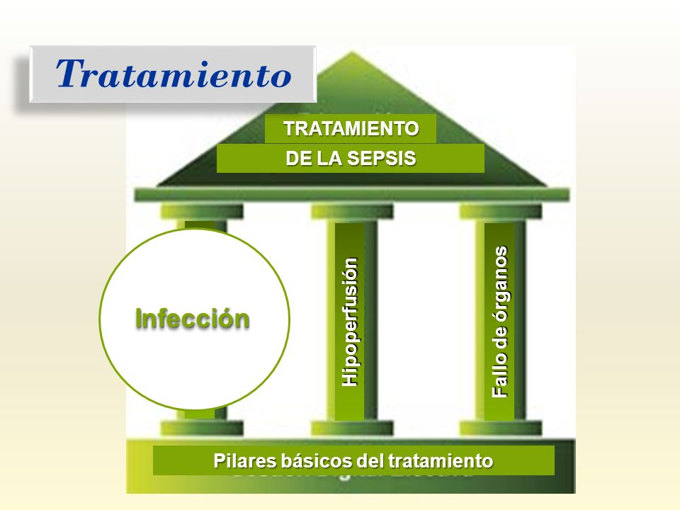 Infección TRATAMIENTO DE LA SEPSIS Fallo de órganos Hipoperfusión Pilares básicos del tratamiento Tratamiento Infección