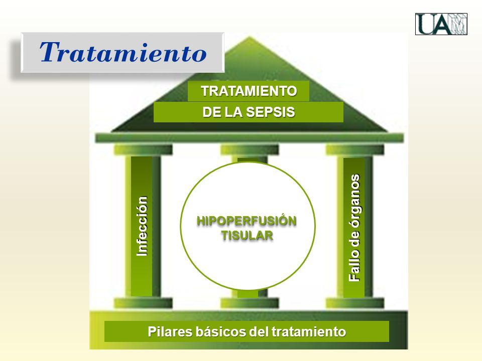 Infección TRATAMIENTO DE LA SEPSIS Fallo de órganos Hipoperfusión Pilares básicos del tratamiento Tratamiento HIPOPERFUSIÓN TISULAR