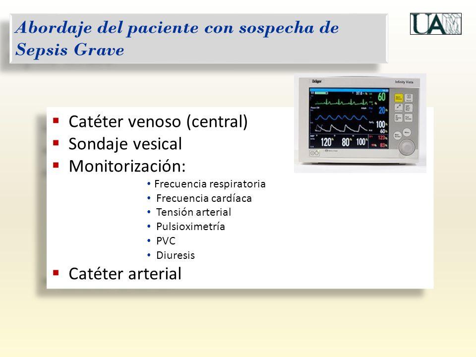 Catéter venoso (central) Sondaje vesical Monitorización: Frecuencia respiratoria Frecuencia cardíaca Tensión arterial Pulsioximetría PVC Diuresis Caté