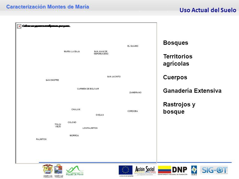 Caracterización Montes de María GOBERNACIÓ N DE SUCRE GOBERNACIÓ N DE BOLIVAR COMUNIDAD EUROPEA Uso Actual del Suelo Bosques Territorios agrícolas Cue
