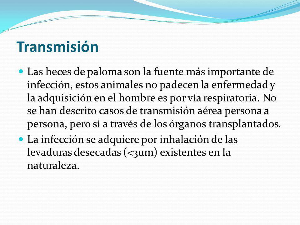Transmisión Las heces de paloma son la fuente más importante de infección, estos animales no padecen la enfermedad y la adquisición en el hombre es por vía respiratoria.