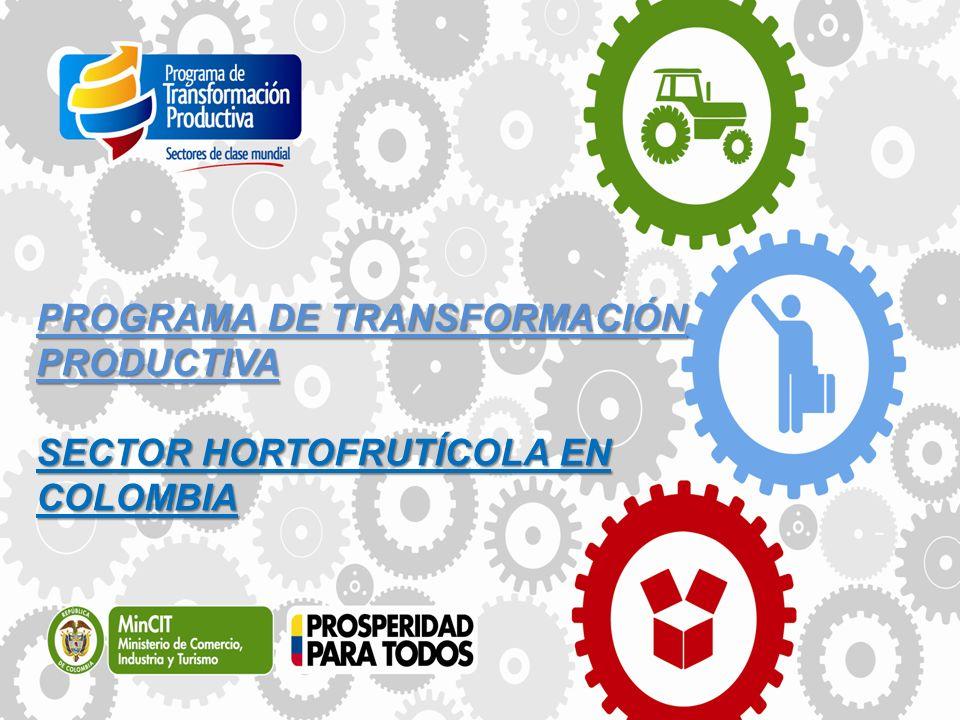 PROGRAMA DE TRANSFORMACIÓN PRODUCTIVA SECTOR HORTOFRUTÍCOLA EN COLOMBIA