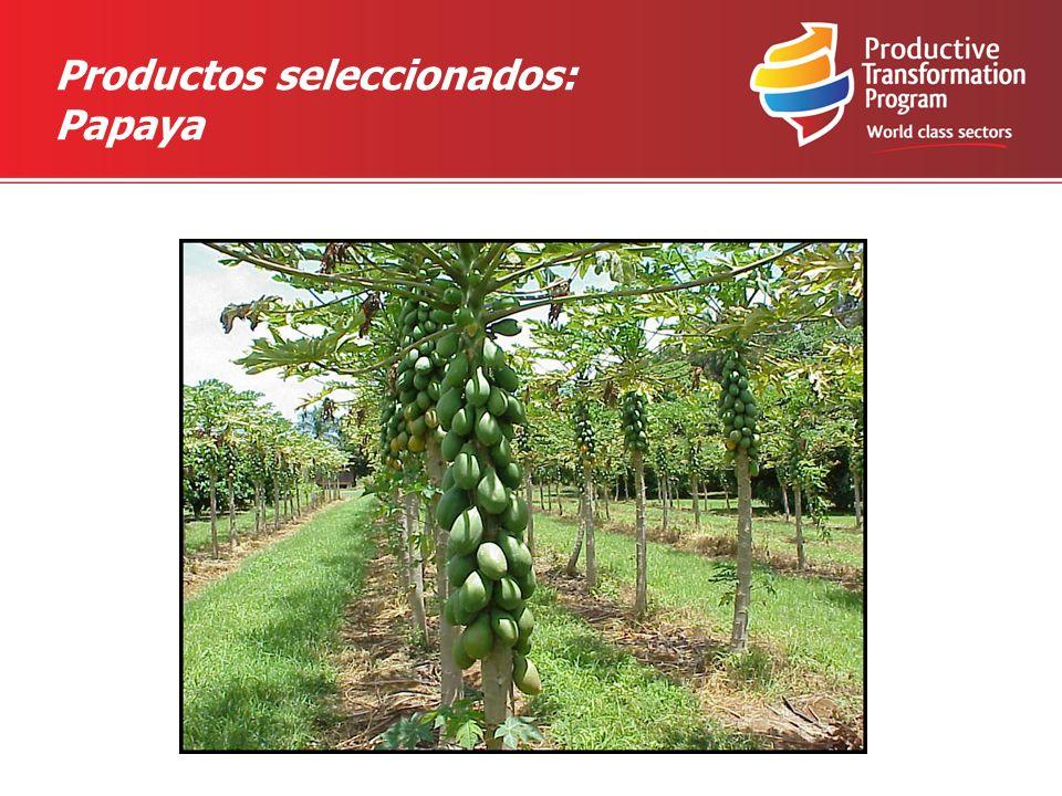 Productos seleccionados: Papaya