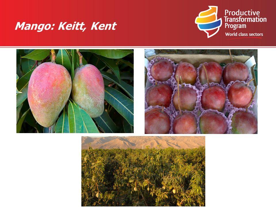 Mango: Keitt, Kent