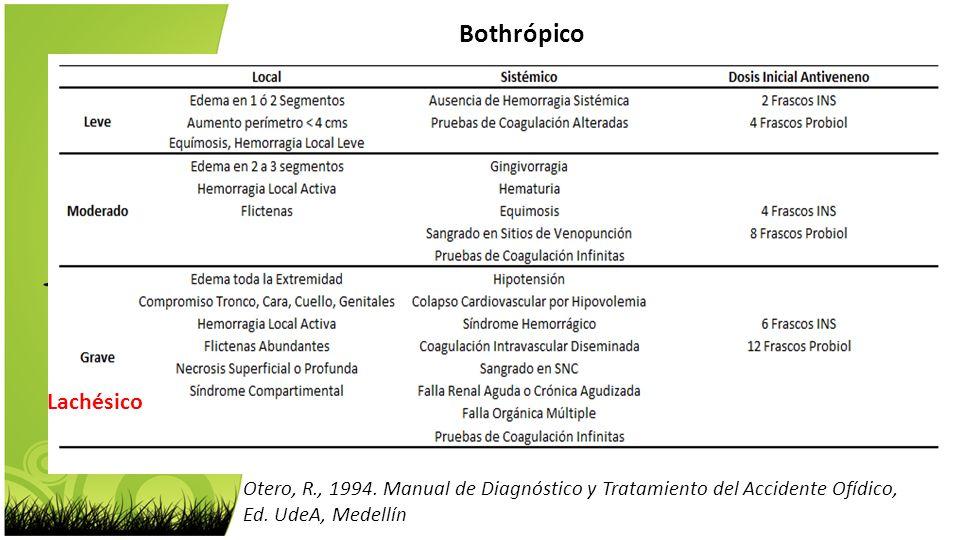 Bothrópico Lachésico Otero, R., 1994. Manual de Diagnóstico y Tratamiento del Accidente Ofídico, Ed. UdeA, Medellín