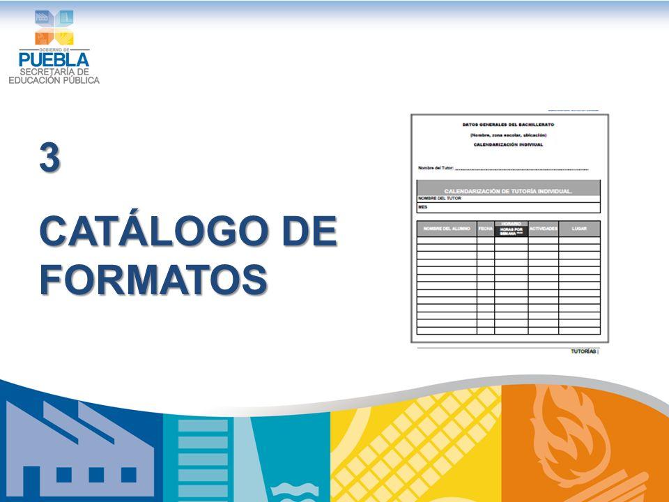 3 CATÁLOGO DE FORMATOS