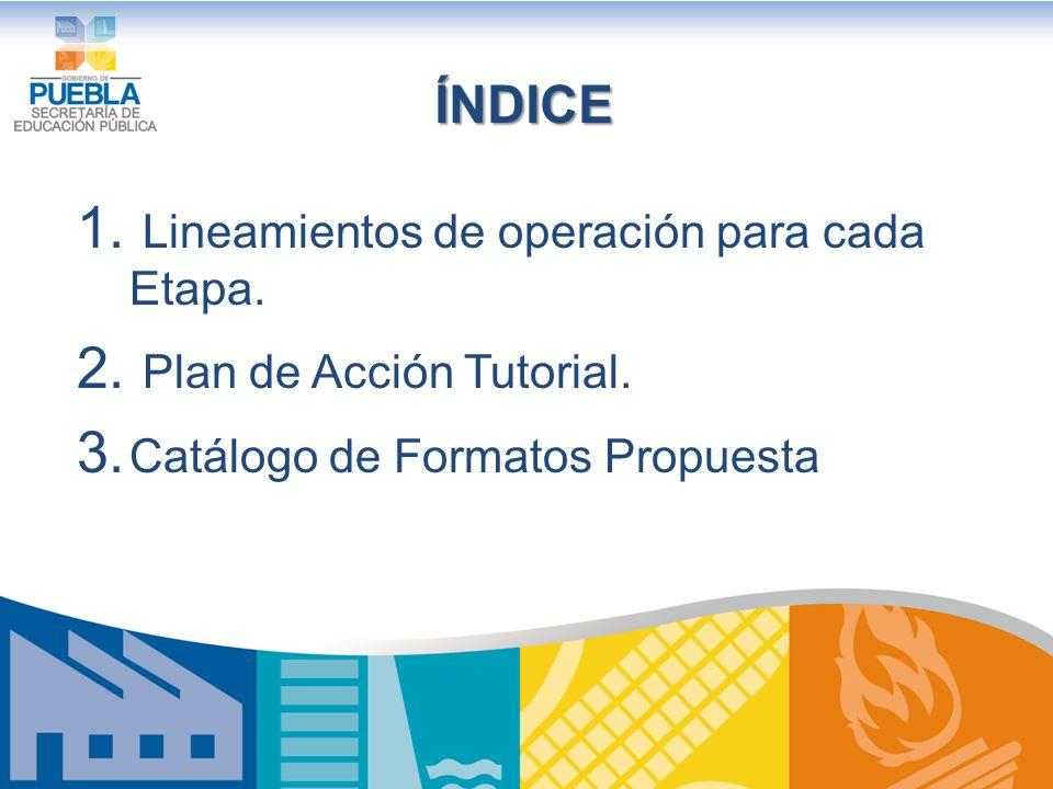 ÍNDICE 1.Lineamientos de operación para cada Etapa.