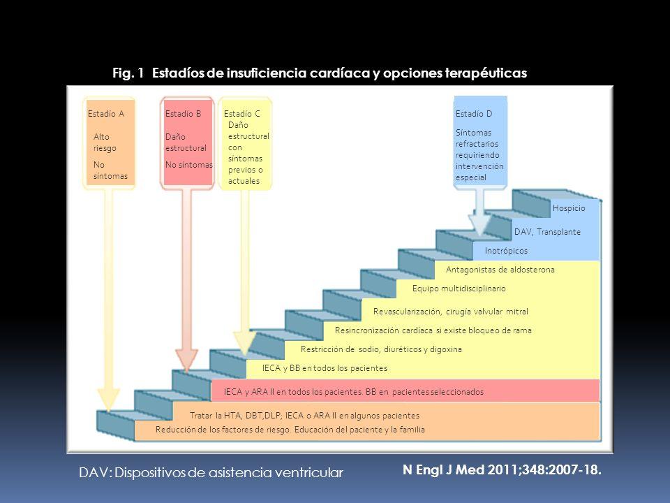 N Engl J Med 2011;348:2007-18. Fig. 1 Estadíos de insuficiencia cardíaca y opciones terapéuticas Estadío A Alto riesgo No síntomas Estadío B Daño estr