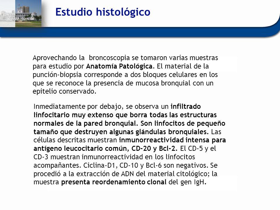 Estudio histológico Aprovechando la broncoscopia se tomaron varias muestras para estudio por Anatomía Patológica. El material de la punción-biopsia co