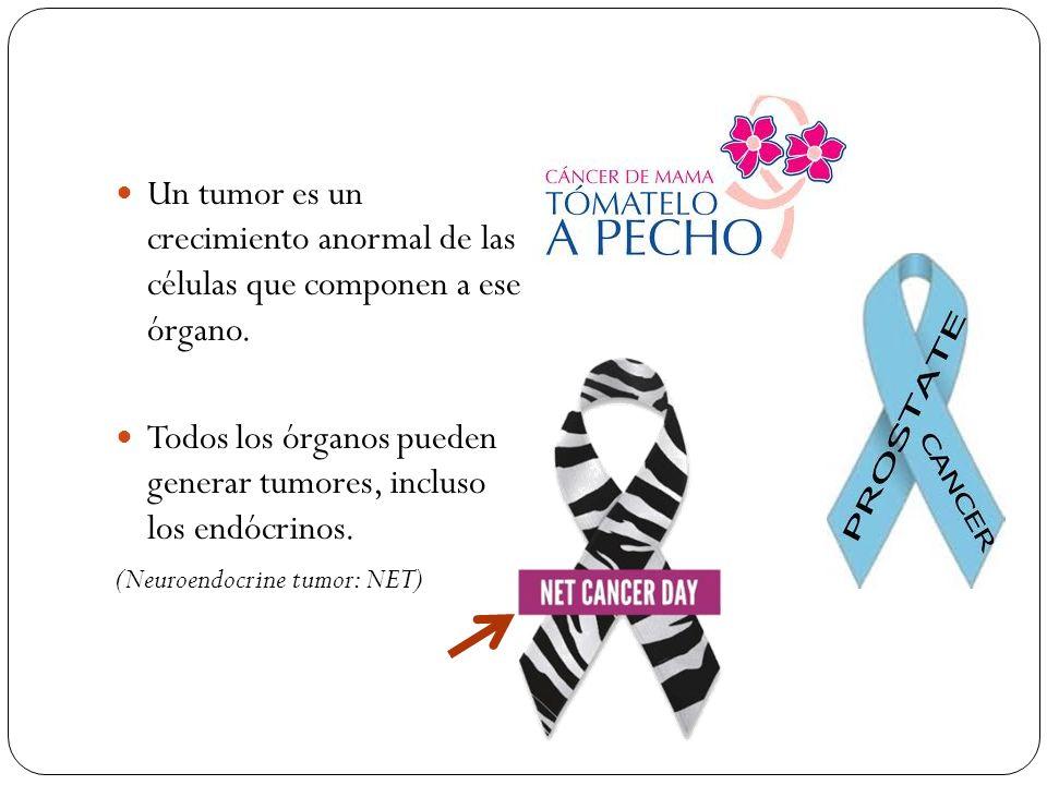 Un tumor es un crecimiento anormal de las células que componen a ese órgano. Todos los órganos pueden generar tumores, incluso los endócrinos. (Neuroe