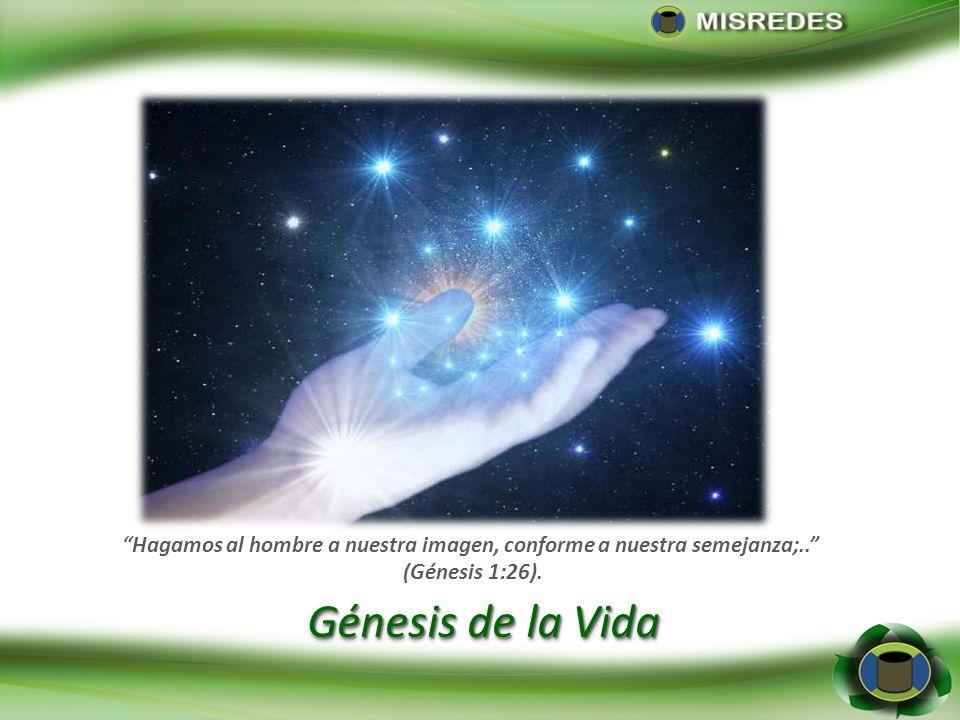 Génesis de la Vida Hagamos al hombre a nuestra imagen, conforme a nuestra semejanza;.. (Génesis 1:26).