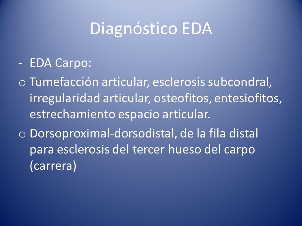 Diagnóstico EDA -EDA Carpo: o Tumefacción articular, esclerosis subcondral, irregularidad articular, osteofitos, entesiofitos, estrechamiento espacio articular.