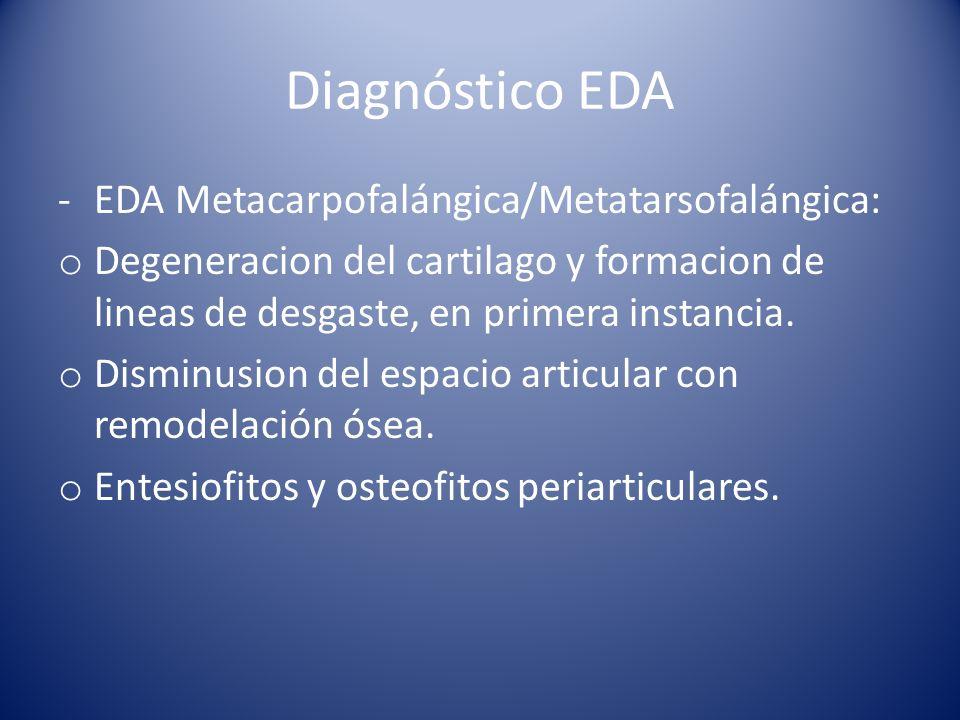 Diagnóstico EDA -EDA Metacarpofalángica/Metatarsofalángica: o Degeneracion del cartilago y formacion de lineas de desgaste, en primera instancia.