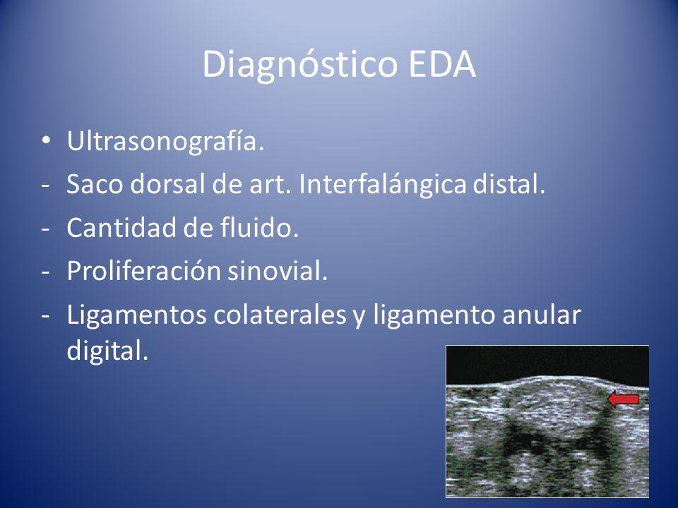 Diagnóstico EDA Ultrasonografía.-Saco dorsal de art.